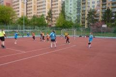 sulcak_plzen-5